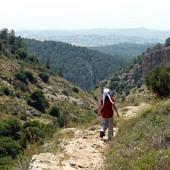 Samária hegyei