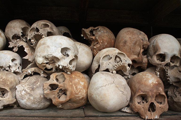 Emberi koponyák